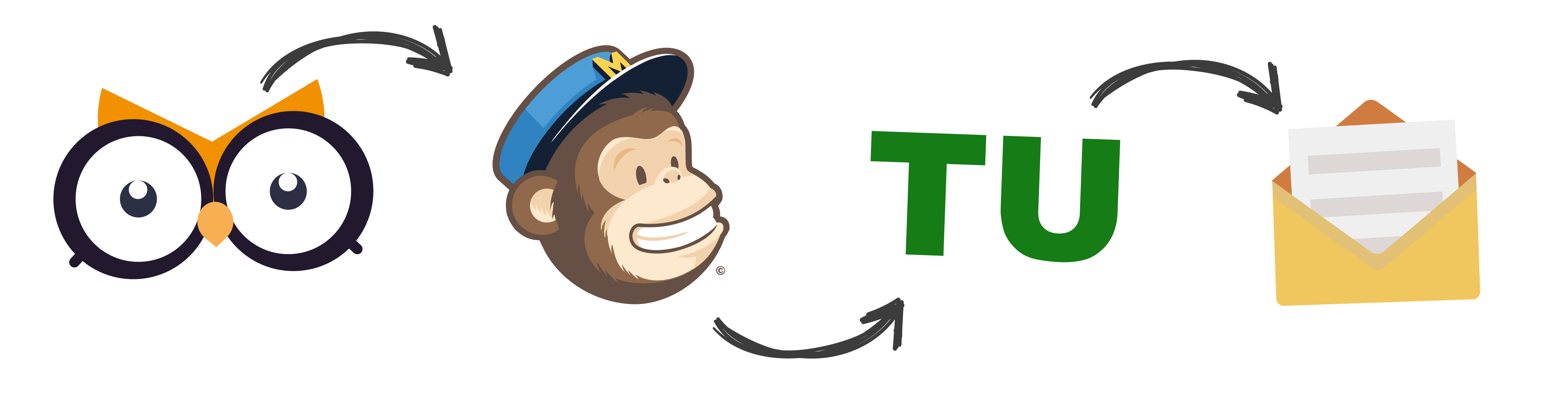 iq-set-newsletter-mailchimp-2