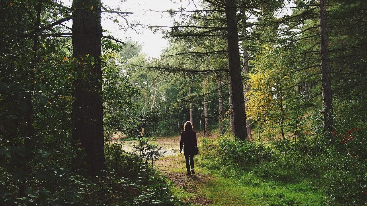 camminare_natura_IQ