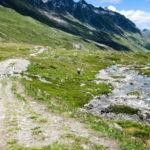Biketrack: escursione in mtb